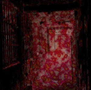 ELIMI (Swe) – 'Asylum' CD