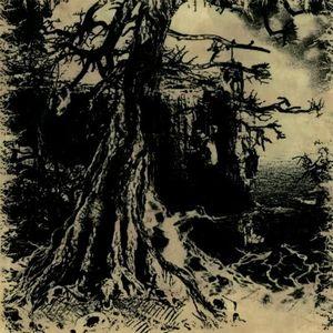 W.A.I.L. (Fin) – 'Wisdom through Agony into Illumination and Lunacy' CD