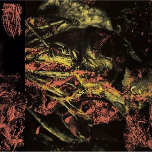 HISSING (USA) – 'Permanent Destitution' CD Digipack