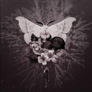"""CELESTIAL GRAVE (Fin) – 'Pvtrefactio' 7""""EP"""