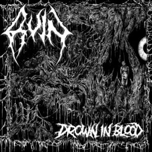 RUIN (USA) - Drown in Blood CD