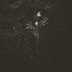 FOLTERAAR (Nl) – 'Vertellingen Van Een Donkere Eeuw' LP