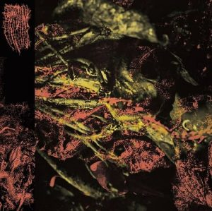 HISSING (USA) – 'Permanent Destitution' LP