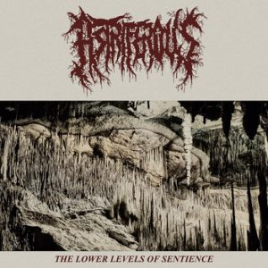 ASTRIFEROUS – The Lower Levels Of Sentience MLP