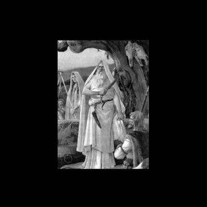 ANCIENT FLAME (USA) – 'Tyrant Blood' CD