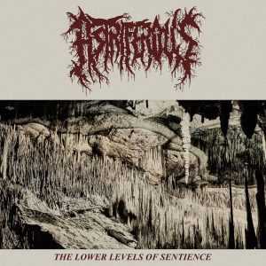 ASTRIFEROUS – The Lower Levels Of Sentience MCD