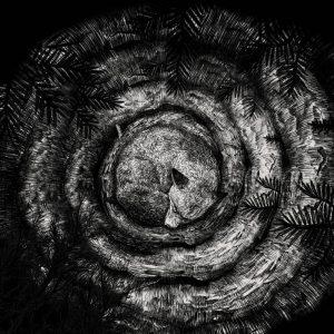 FORHIST (Fra) – 'Forhist' CD Digipack
